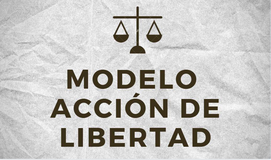 modelo de accion de libertad bolivia