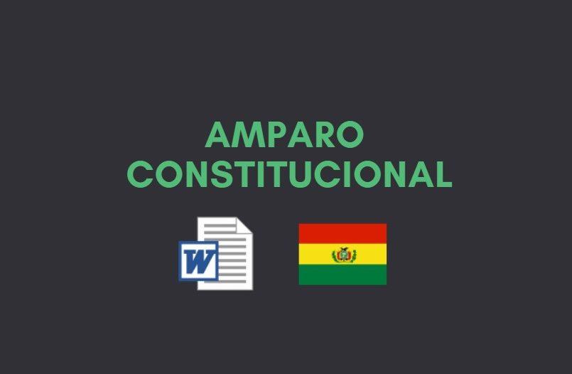 acción de amparo constitucional bolivia